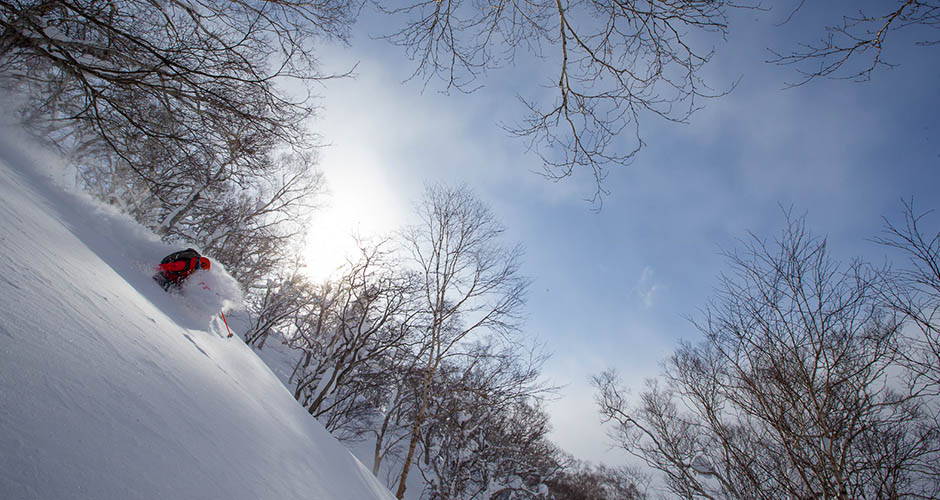 Skiing powder in Japan is a must for every keen skier. Picture: Kiroro Ski Resort