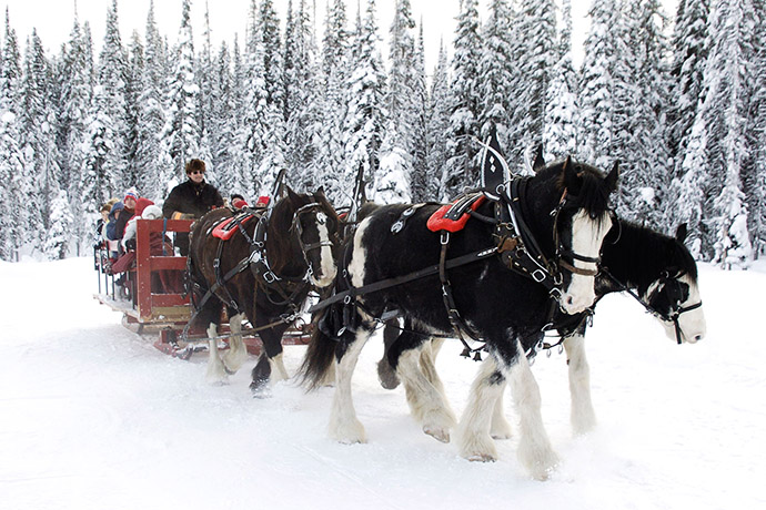 Horse Sleigh Rides - Photo: Big White Ski Resort