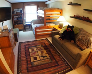 Fireside Lodge 2 Bedroom - Photo: Bear Country