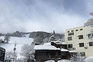 Alp Lodge - Hakuba