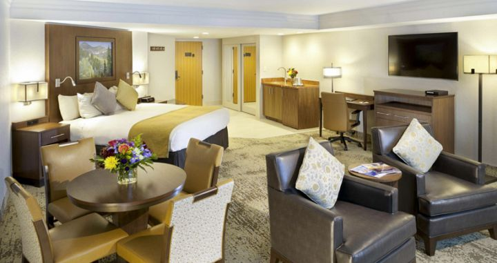 Larger suite rooms for families and couples. - image_6