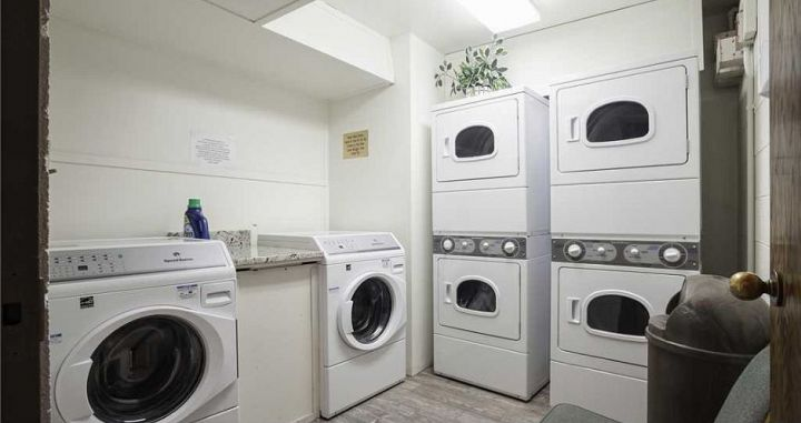 Laundry facilities on-site for convenience. Photo: Bronze Tree - image_8